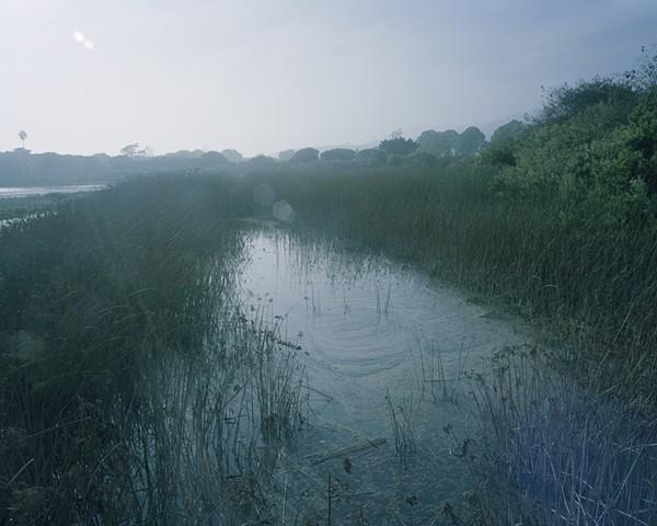 Malibu Creek State Park, Los Angeles County, 2001
