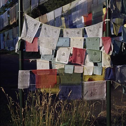 Prayer Flags on the Edge of the Woods #1, Orgyen Chö Dzong, New York, 2010