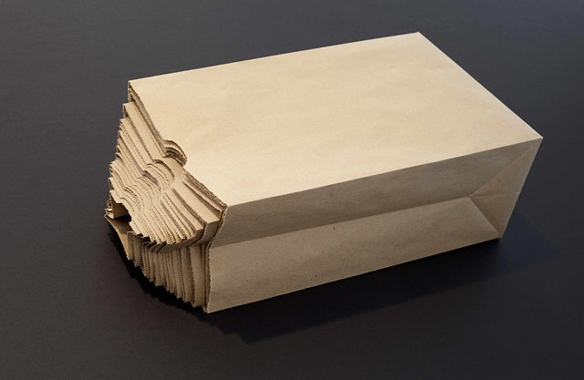 Brown Paper Bag by Adam David Brown,