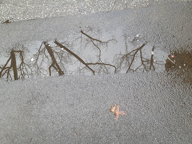 Puddle Reflection III