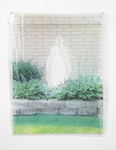 Ghost Mary with Hostas