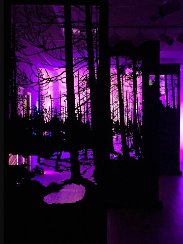installation art, shadow play,  video projection,  silhouette, roofing paper, forest