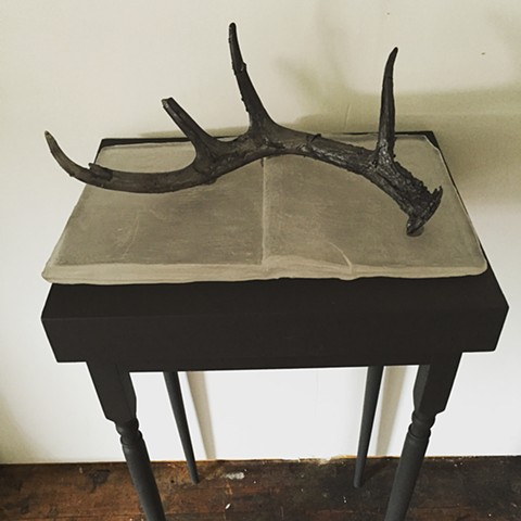 kiln cast glass, glass antlers, glass book