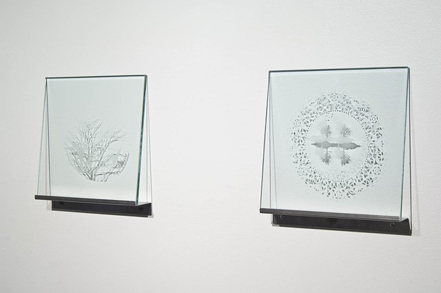 etched glass, sandblasted glass, doilie, tree imagery, birds