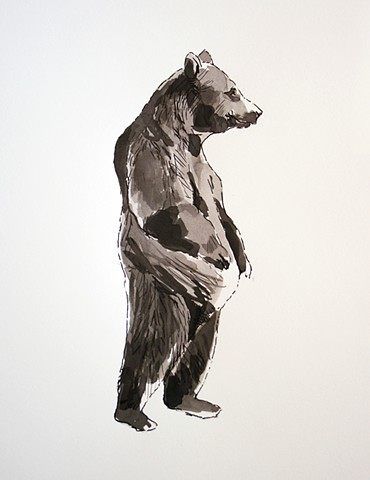 (Black & White Bear)