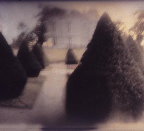 Topiary I, Saint Florent, France