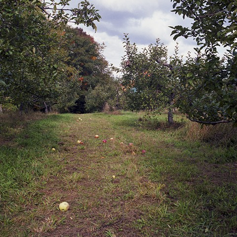 hope orchard