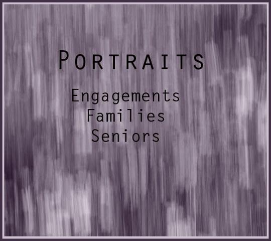 Portraits  Engagements, Families, Seniors
