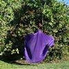 Purple Float