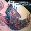In progress re-do, Allie's phoenix