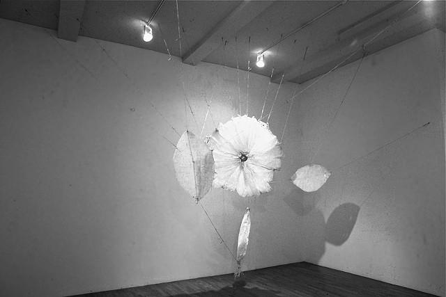 A Flower for Ethyl Eichelberger