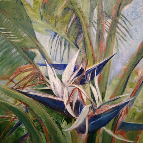 """Bird of Paradise series #3"""