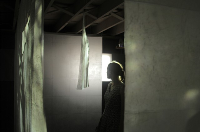installation with video projection on waxed paper and mesh, of leaves, shadows