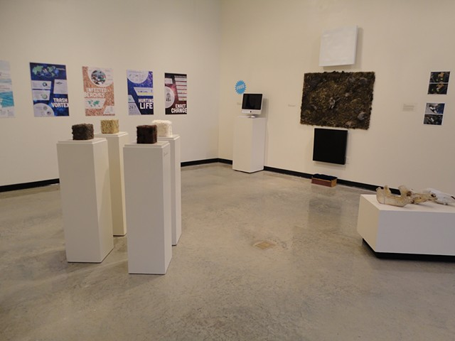 Indefinitely: A Group Exhibition Exploring Eco-Justice, gallery view