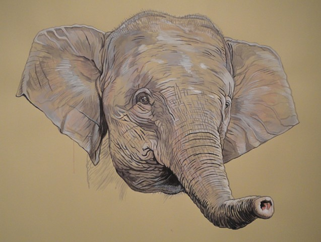 Borneo Pygmy Elephant (from the Apologies to the Future series)