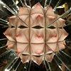 Kaleidoscope work