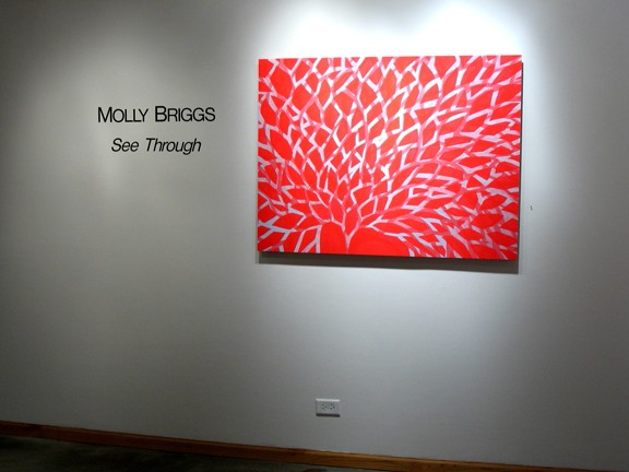 See Through Installation View -- MPT2