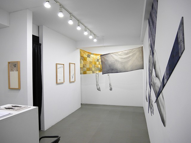 Veiled  {Installation View}