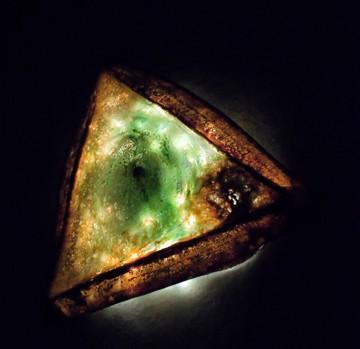 Bio-luminescent Organism