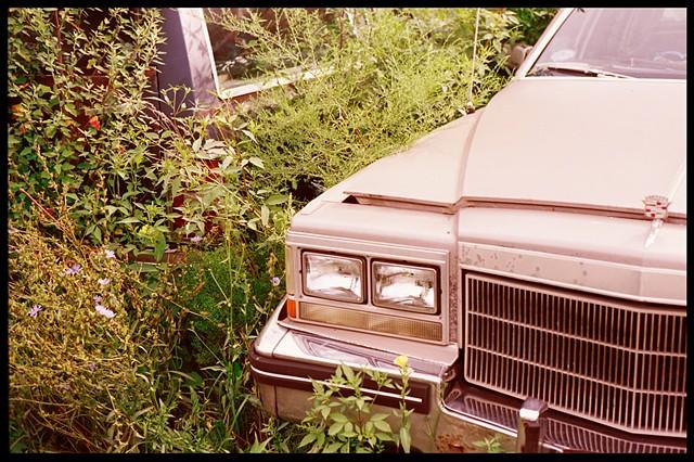 Junkyard, Chicago, Car