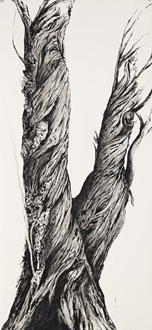 Tree N0.6