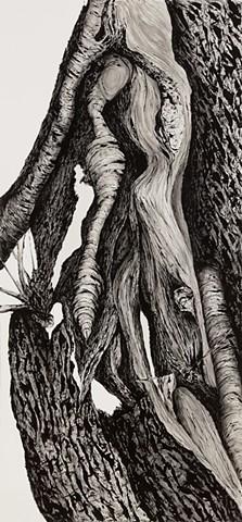 Tree, N0.8