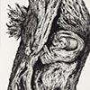 Tree N0.5