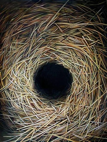 nest, hole, weaving, Order, Chaos, Nature, oil painting