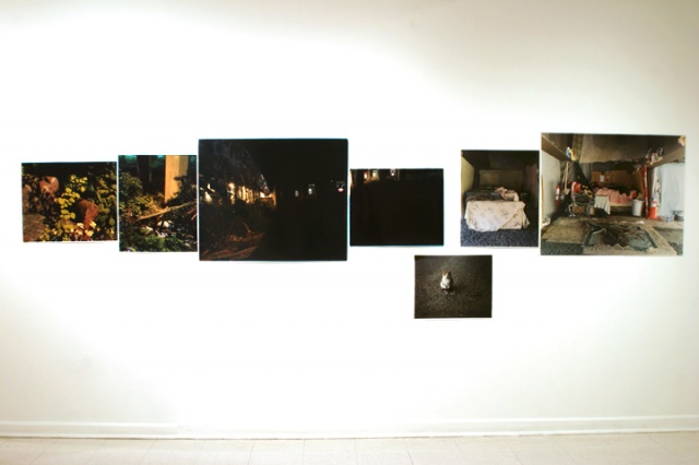Full Installation View