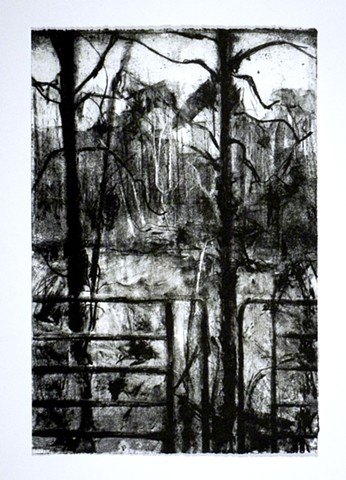 "Lake Matoaka: Process Takes Over. 15 x 22.25"". Lithograph. February 2011."