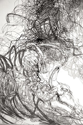 Feral: Drawing 1 Detail