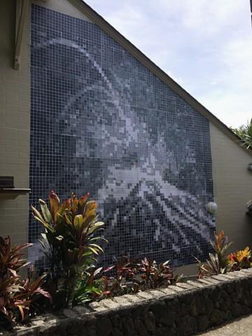 Kulaiwi Large-scale Print Mural Hanahau'oli School Honolulu, HI