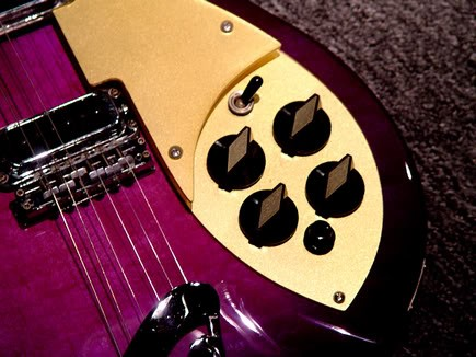 Rickenbacker 330 in Custom Purple Burst--Detail of Control Knobs