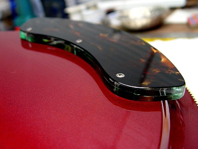 "Rickenbacker ""Selvagem"" Custom 381--Tortoise and Acrylic Control Panel Fitted to Back of Guitar"