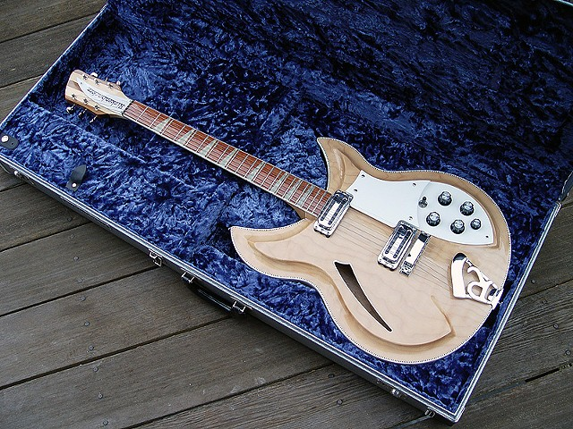 Rickenbacker 381 Custom--How It All Started!