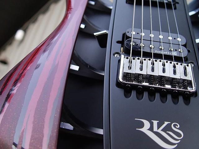 RKS Concept Guitar--Close Up of Structural Features