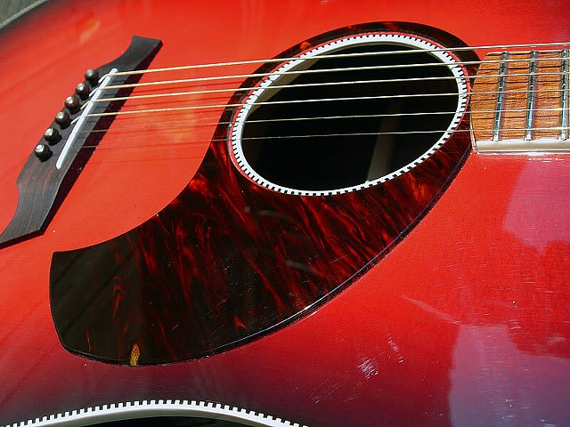 "Rickenbacker 730S/6 ""Verona""--Sound Hole from Another Angle"