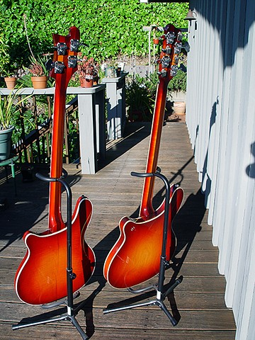 Rickenbacker 4005 and 4005/8--Full-Length Backs in Bright Sunlight