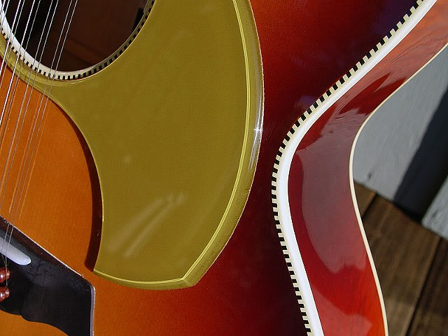 Detail of Unique Pickguard