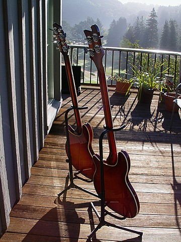 Rickenbacker 4005 and 4005/8--Their Backs to the Sun