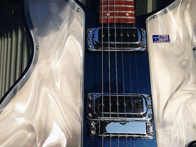Rickenbacker Light Show Solid State Conversions--Detail of Front Showing Diffusion Panels