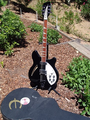 Rickenbacker Dave Stewart 360/12 Eurythmics--Full-Length Portrait and Tour Case