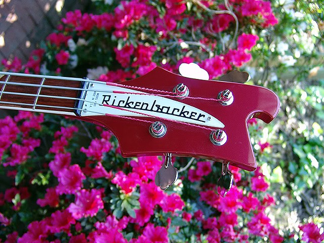 Rickenbacker 4001 Bass--Ruby with Checkerboard--Detail of Headstock