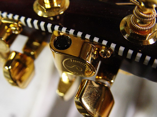 Rickenbacker 700C/12 Mary Kaye White/Wineburst--Extreme Close Up of Headstock