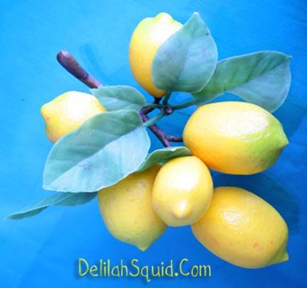Lemony Thicket