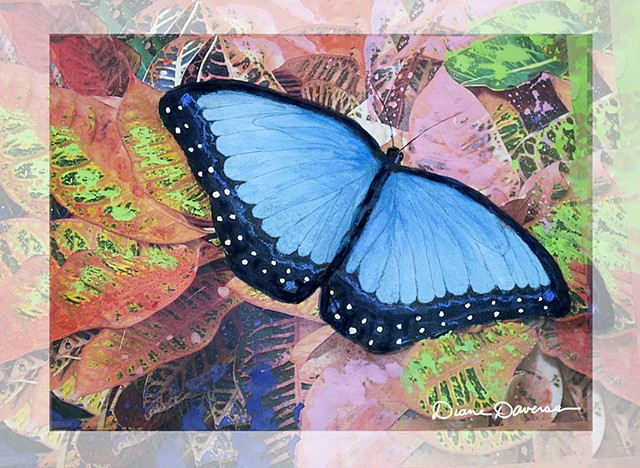 blue morpho butterfly painting by Diane Daversa, butterfly art, blue morpho butterfly art, diane daversa art