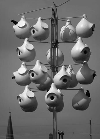 Hannibal Bird Houses