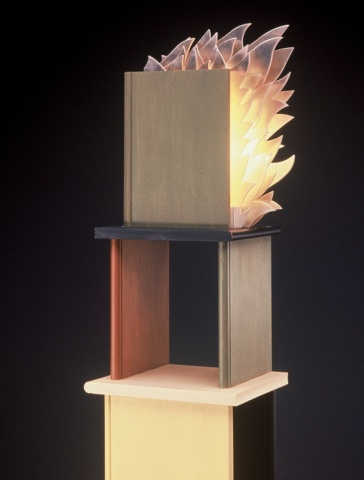 Burning Bookshelf (Vertical)