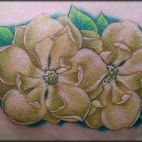 Tiny Magnolias