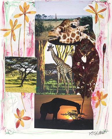 Africa Notebook Series  Out of Africa #3
